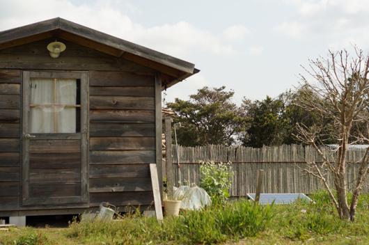 房総フィールド 春の朝の小屋