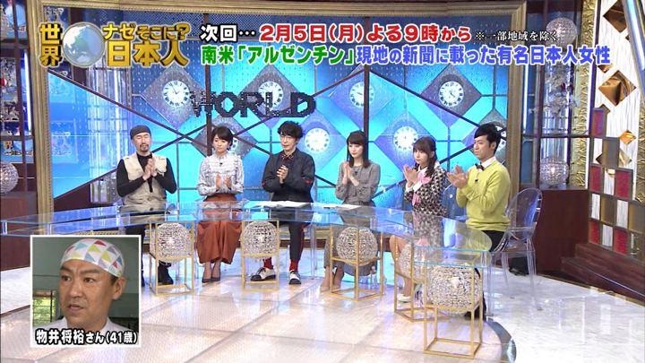 2018年01月29日新井恵理那の画像34枚目