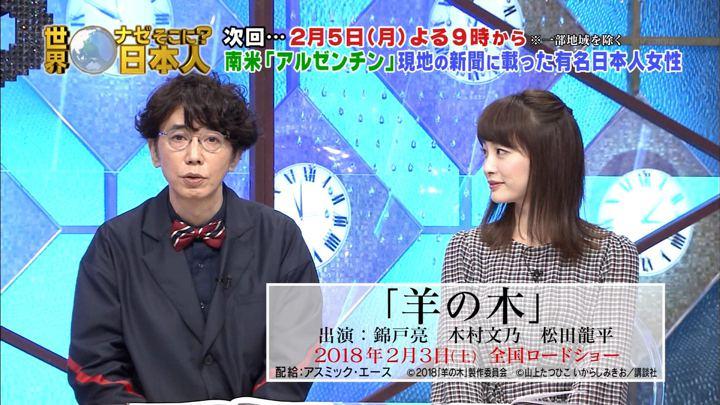 2018年01月29日新井恵理那の画像38枚目