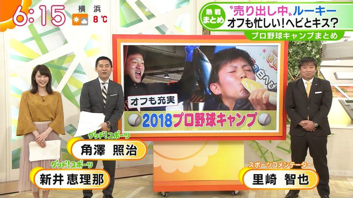 2018年02月06日新井恵理那の画像17枚目
