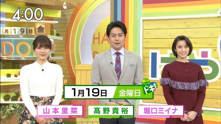 2018年01月19日堀口ミイナの画像01枚目