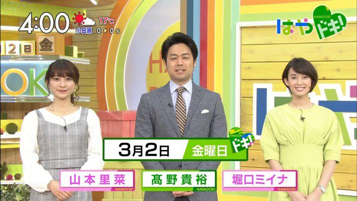 2018年03月02日堀口ミイナの画像01枚目