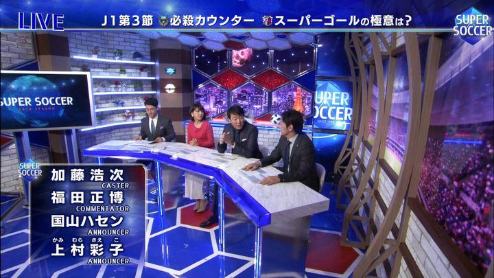 2018年03月11日上村彩子の画像14枚目