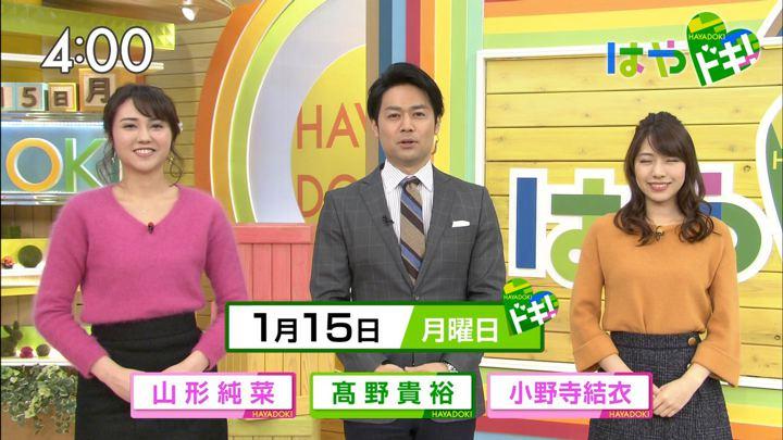 2018年01月15日山形純菜の画像01枚目