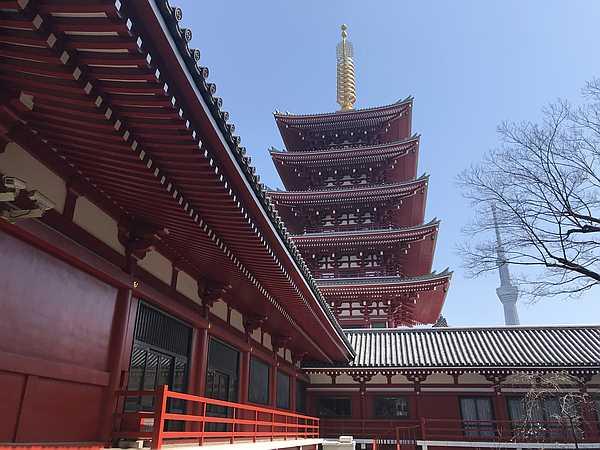 伝法院側から見た五重塔