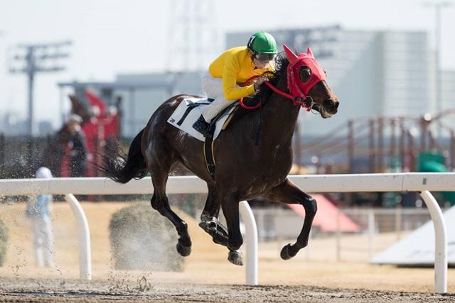 180301 町田直希騎手 800勝-01