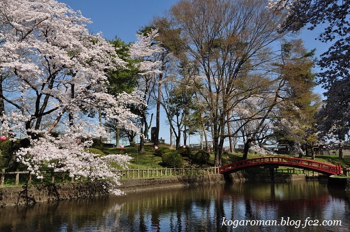 間々田八幡公園の桜