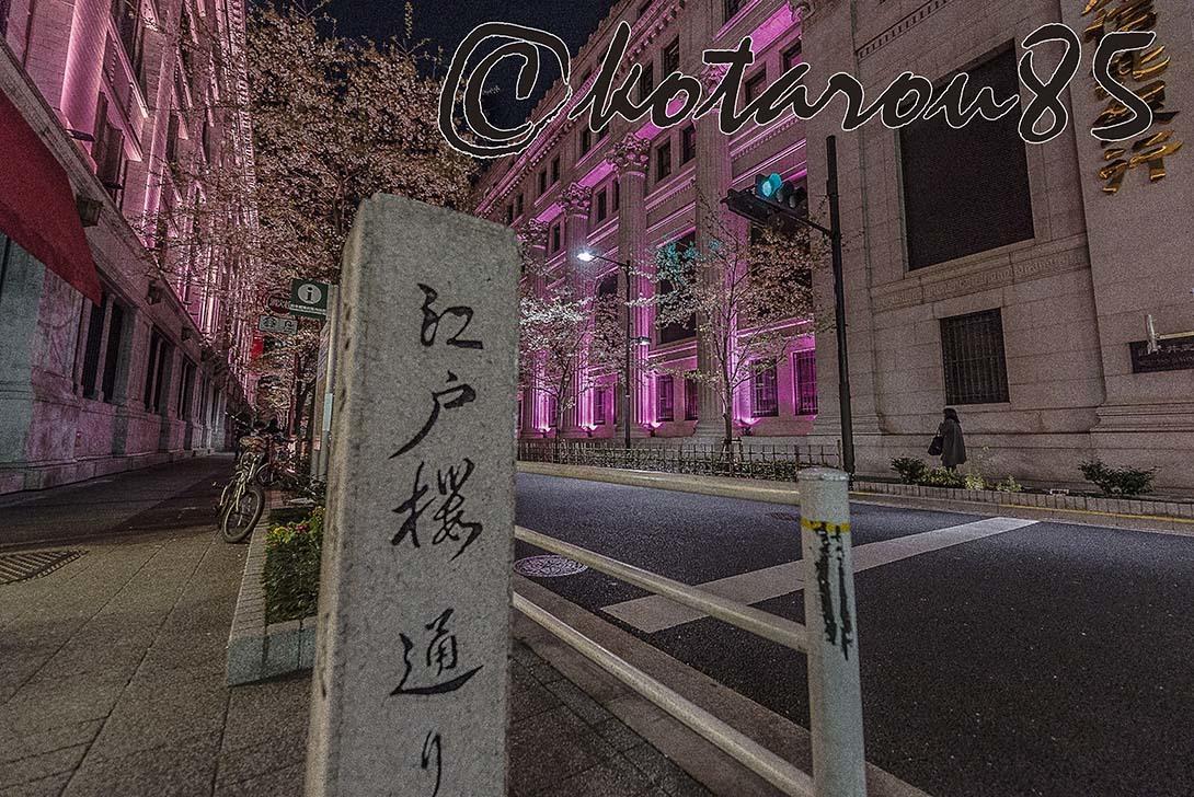 江戸櫻通り 20180331