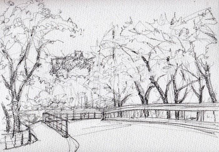 成田公園の桜 デッサン (700x488)
