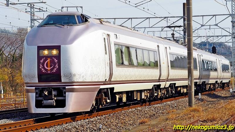 s-0P2030052-2.jpg
