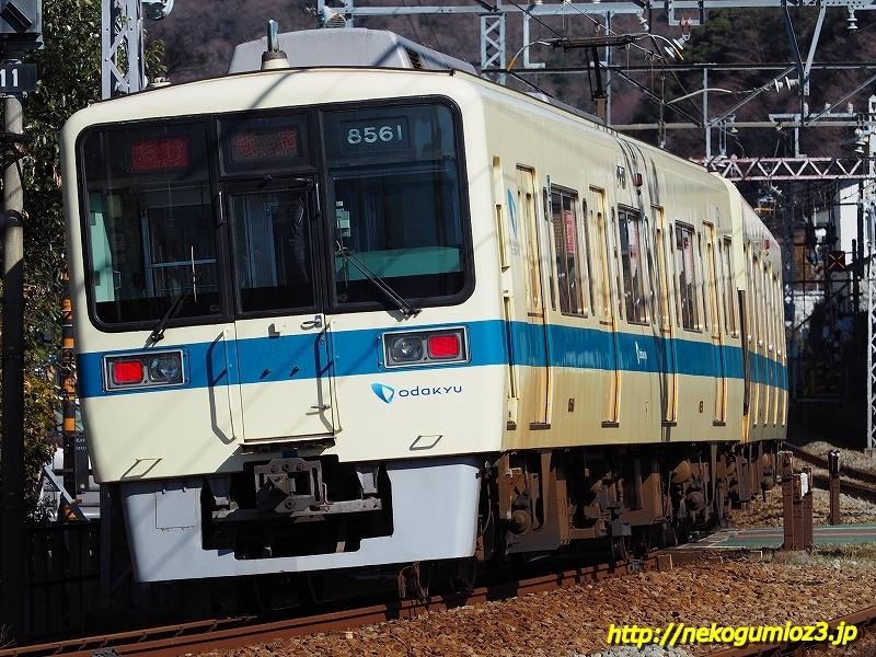 s-P1279304.jpg