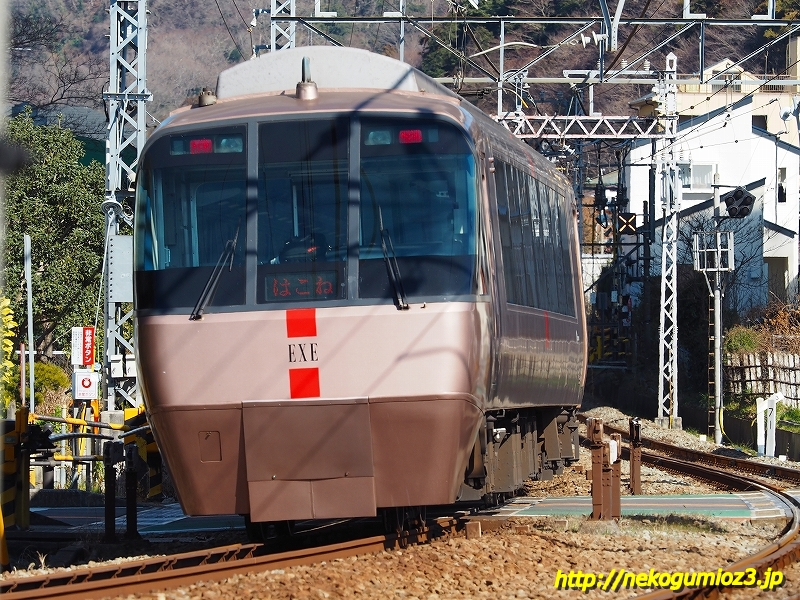 s-P1279408.jpg