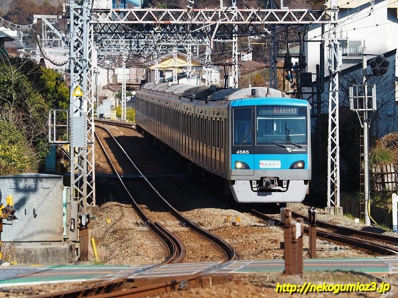 s-P1279508.jpg