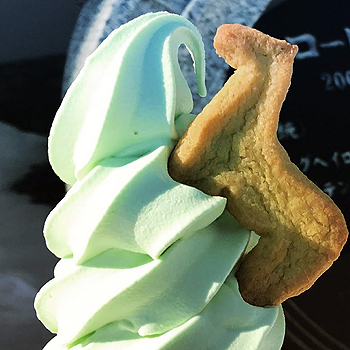 20180321_馬型クッキー付き♪
