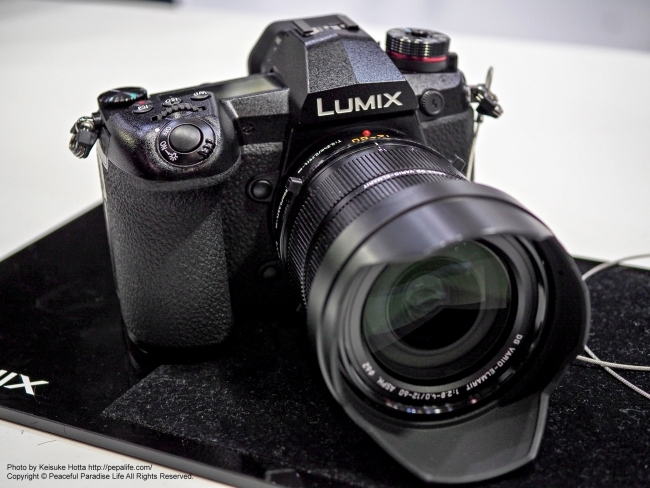 LUMIX G9 PRO(DC-G9)