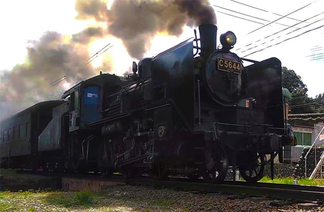 大井川鐵道を行くC56 44