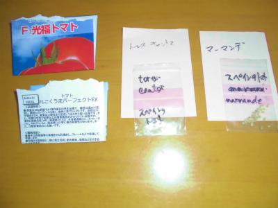 2.23トマトの種1