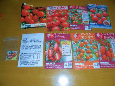 2.23トマトの種2