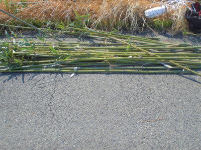3.2竹切り2