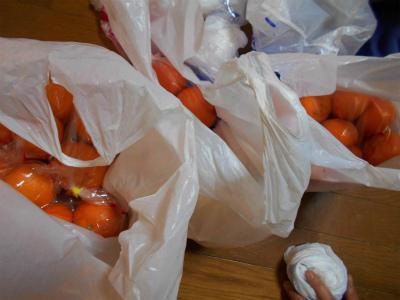 3.11買って来た柑橘2