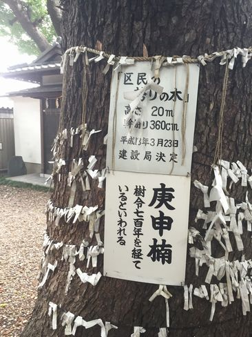 猿田彦神社・庚申榎_H29.06.27撮影