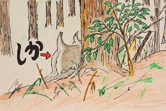 鹿おけつ20180322