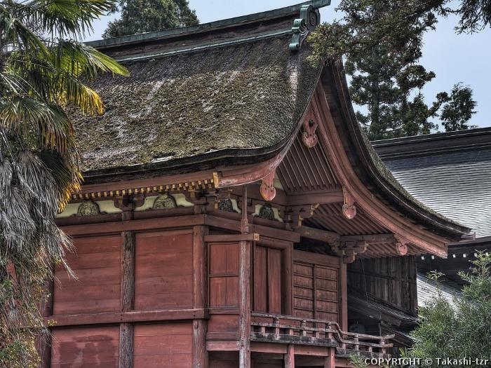 八坂神社本殿(山口)