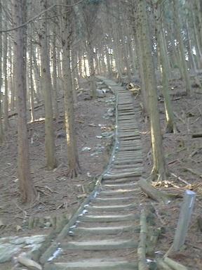 ダイトレ階段