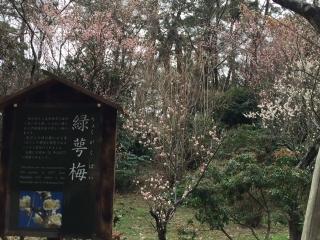 三溪園_003