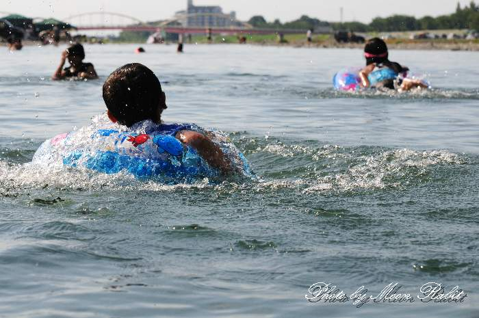 おちきりで泳ぐ 加茂川