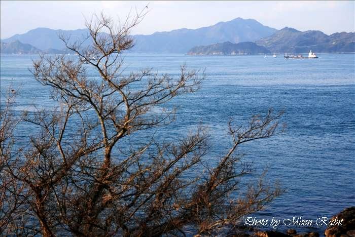大角海浜公園と瀬戸内海