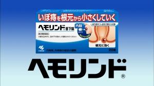 saitoharuka_hemorind_004.jpg