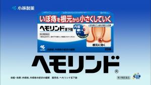 saitoharuka_hemorind_011.jpg