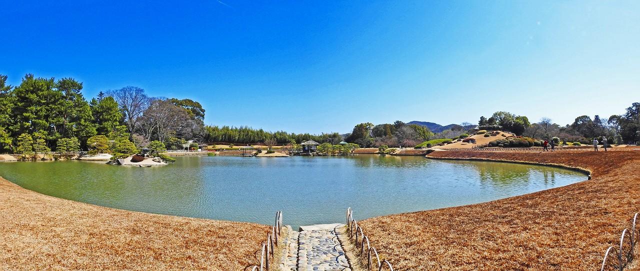 20180310 後楽園今日の沢の池越しに眺めた園内ワイド風景 (1)