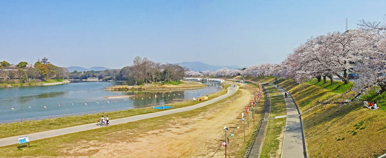 20180329 岡山さくらカーニバル会場の開幕日朝の様子ワイド風景 (1)