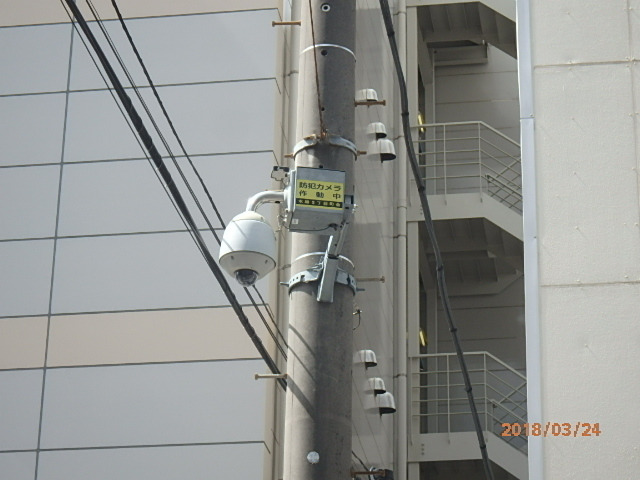 P3240104.jpg