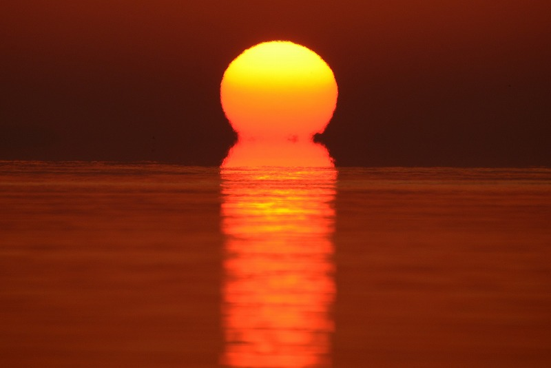 日の出11