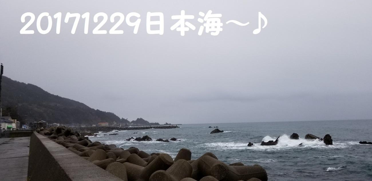 1_20180211013321d09.jpg