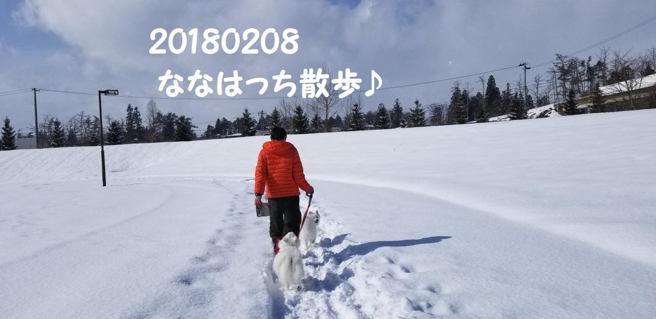 20180208_120931.jpg