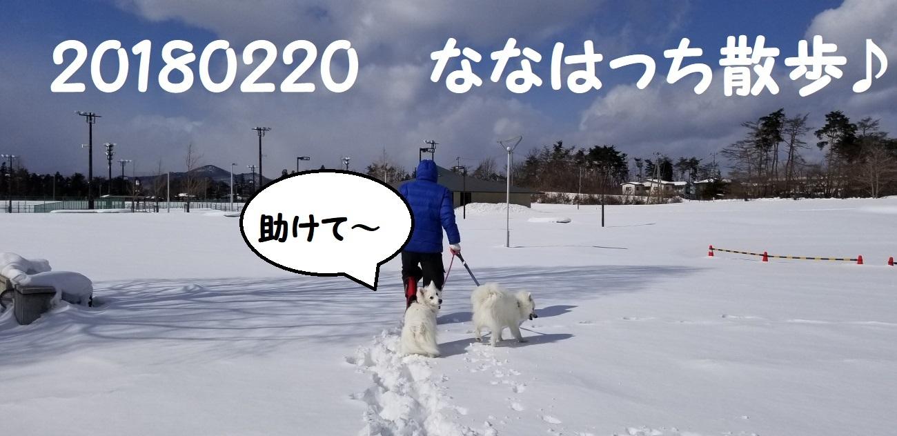 20180220_122937.jpg