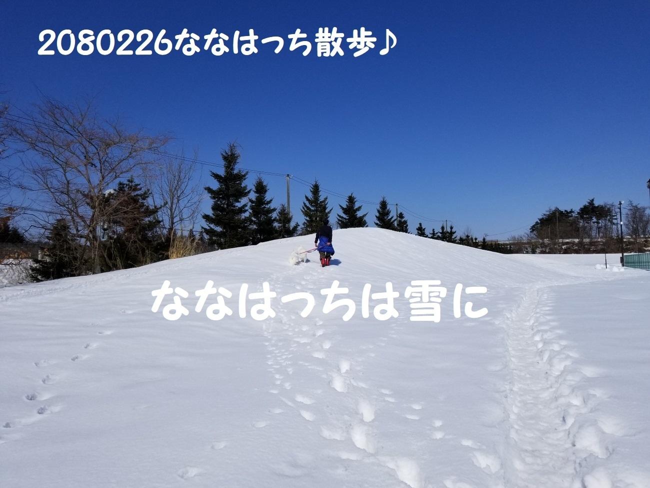 20180226_115135.jpg
