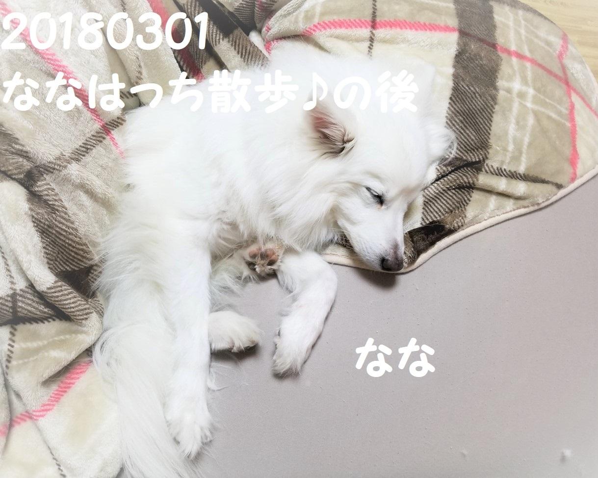 20180301_015055.jpg