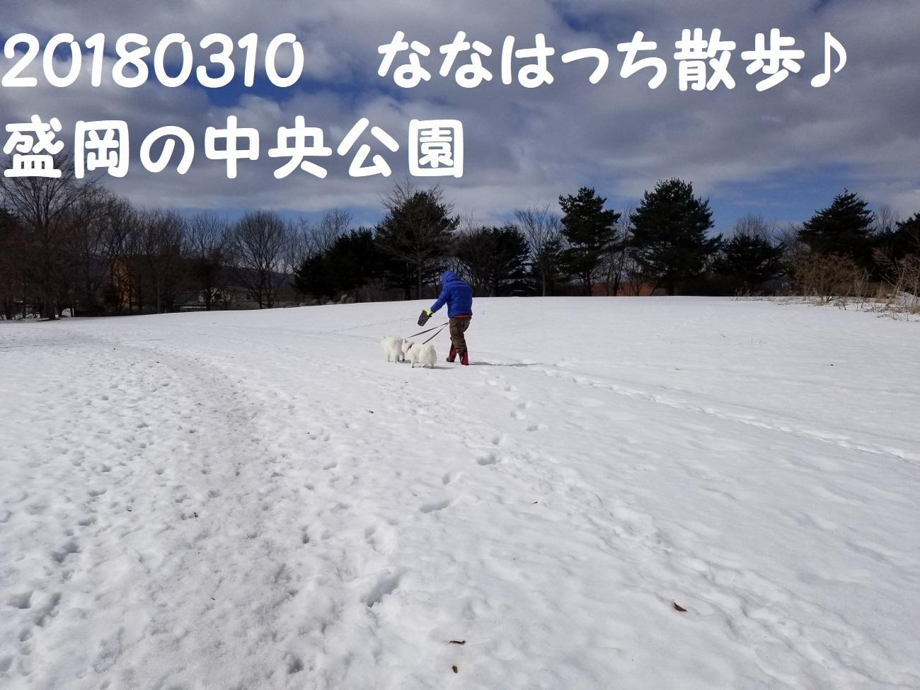 20180310_105853.jpg