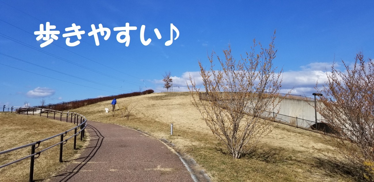 20180324_150050.jpg