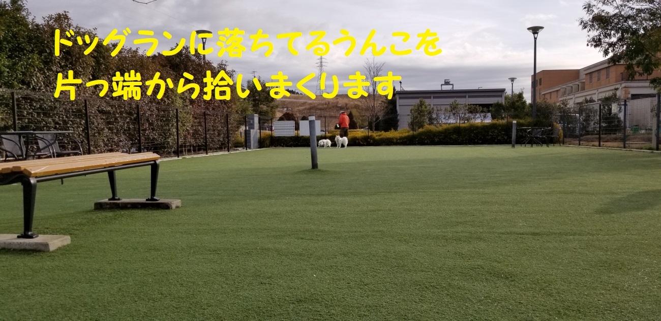 8_20180220155316fe7.jpg