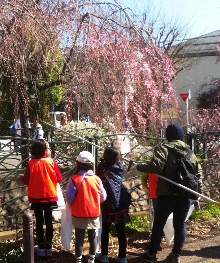 2枝垂れ桜も咲き始めた