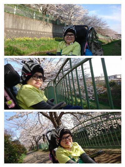 collage-1522054392199_convert_20180326220108.jpg