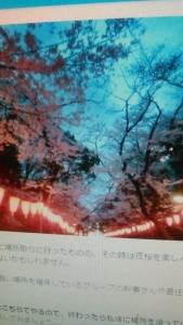 180324 上野花見