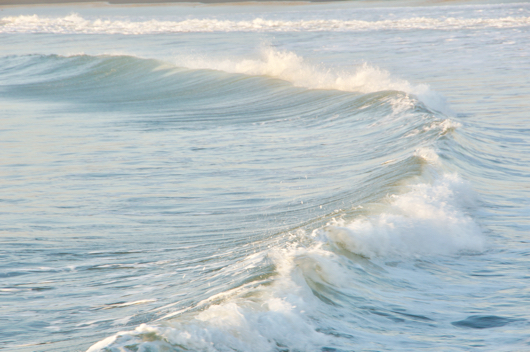 房総散歩 春の海