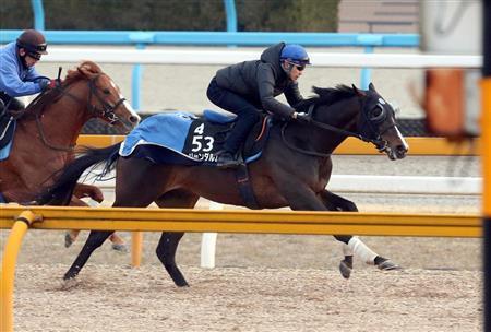 【弥生賞】武豊「弥生賞を勝ったらと皐月賞で競馬を変えにくくなる。とはいえ、試し乗りもできないからねえ」